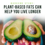 Harvard Study: Plant-Based Fats Can Help You Live Longer
