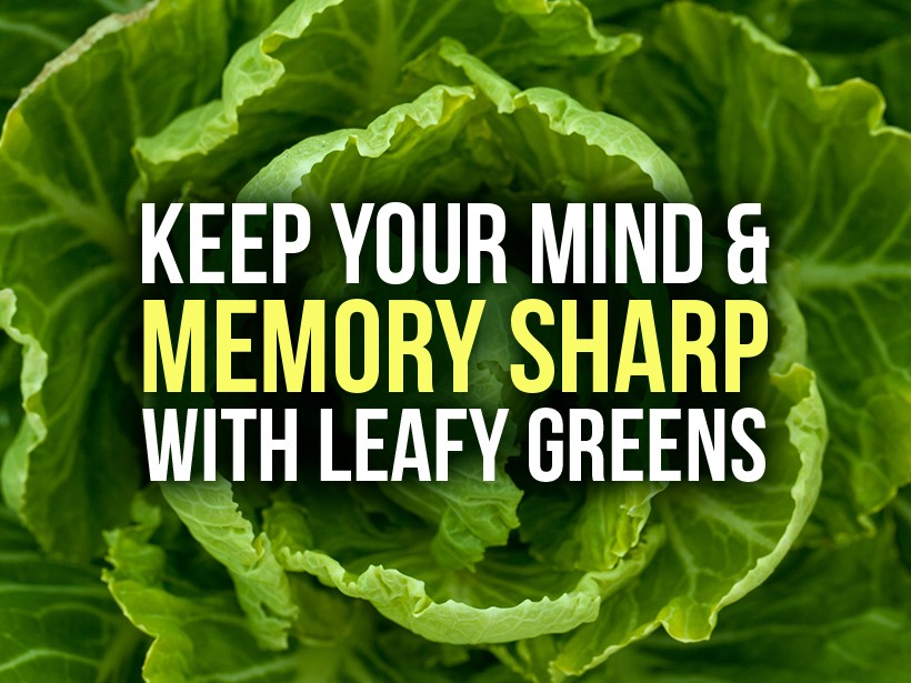 Keep Your Mind & Memory Sharp with Leafy Greens