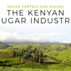 Sugar Cartels Are Killing the Kenyan Sugar Industry