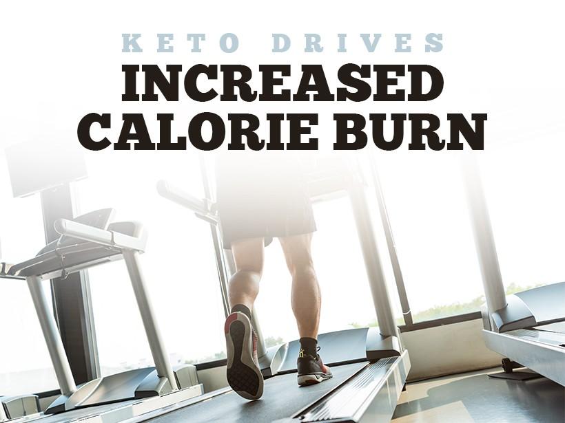 Keto Drives Increased Calorie Burn