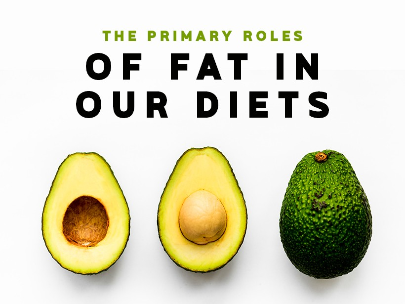 The Primary Roles of Fat in Our Diets